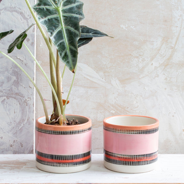 Liquorice All Sorts Little Planter - Dusty pink