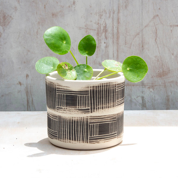Textured Linear Stripe Little Planter - Black