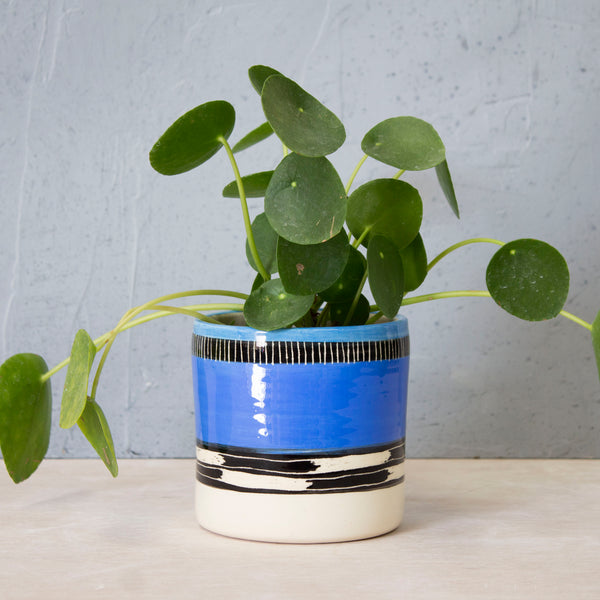 Blue Haze Planter - Electric Blue
