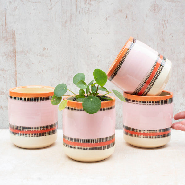 Liquorice All Sorts Medium Planter - Dusty Pink