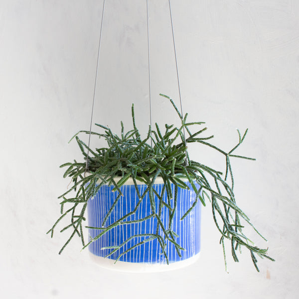 Stripey Road Outdoor Large Hanging Planter - Electric Blue
