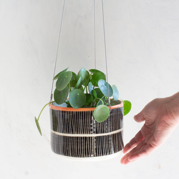 Stripey Road Large Hanging Planter - Nasturtium