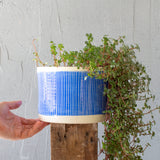 Stripey Road Jumbo M Planter  - Electric Blue