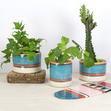 Liquorice All Sorts Large Planter - Black, Lagoon, Galah & Indian Red