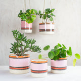 Liquorice All Sorts Planter - Black, Dusty Pink, Indian Red & Nasturtium