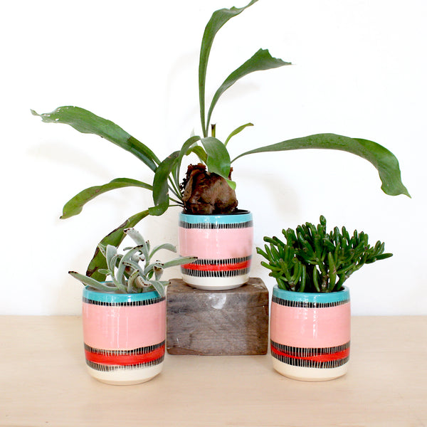 Liquorice All Sorts Medium Planter - Lagoon, Galah & Indian Red