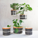 Stripey Road Large Outdoor Hanging Planter - Nasturtium