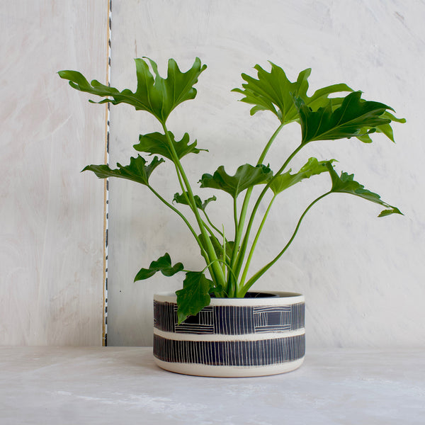 Textured Linear Stripe Shallow Planter // Vessel - Black