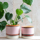 Liquorice All Sorts XL Planter - Black, Dusty Pink, Indian Red & Nasturtium