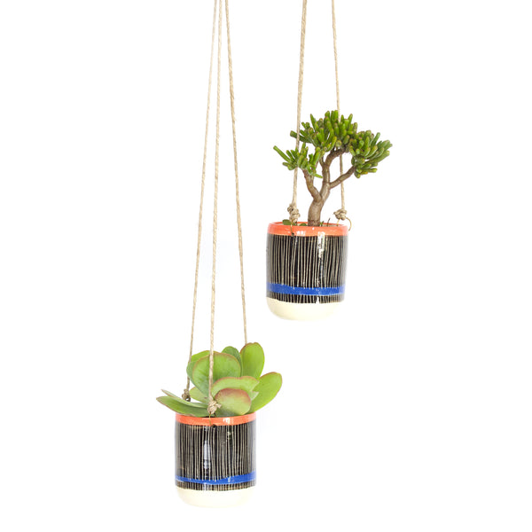 Linear Tall Hanging Planter - Watermelon & Electric Blue