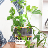 Stripey Road Sunset XXL Jumbo Planter - Black, Nasturtium & Dusty Pink