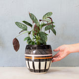 Textured Weave Orb Vessel  - Black, Dusty Pink & Nasturtium