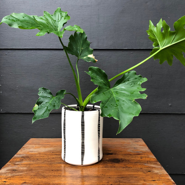 Vertical Stripes Jumbo Planter S - Black