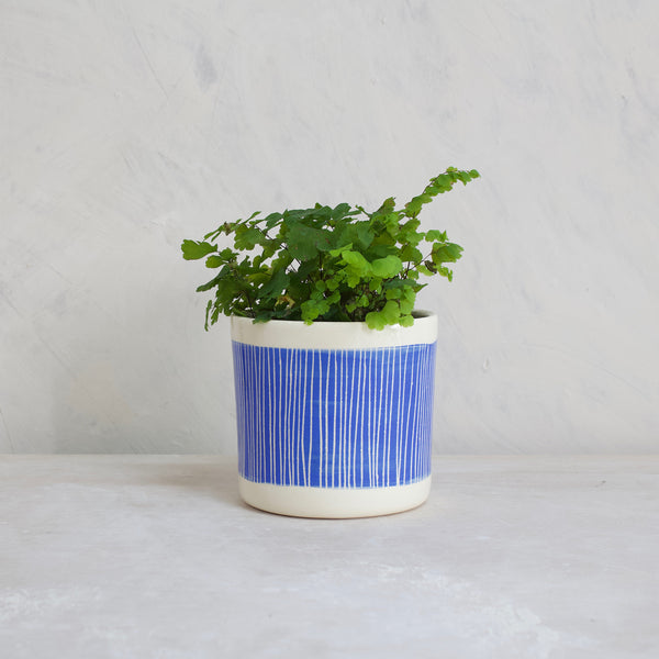 Stripey Road Little Planter - Electric Blue