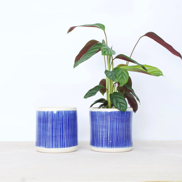 Stripey Road Medium Planter - Electric blue