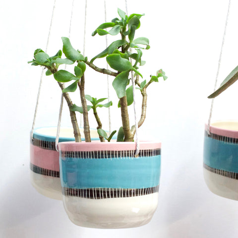 Licorice All Sorts Hanging Planter - Lagoon
