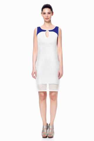 Careen Elegant Reversible Sheath Dress