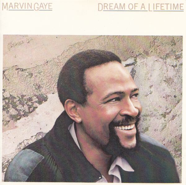 Dream of a Lifetime By Marvin Gaye (Coloured) (Pre-Book at just Rs.500)