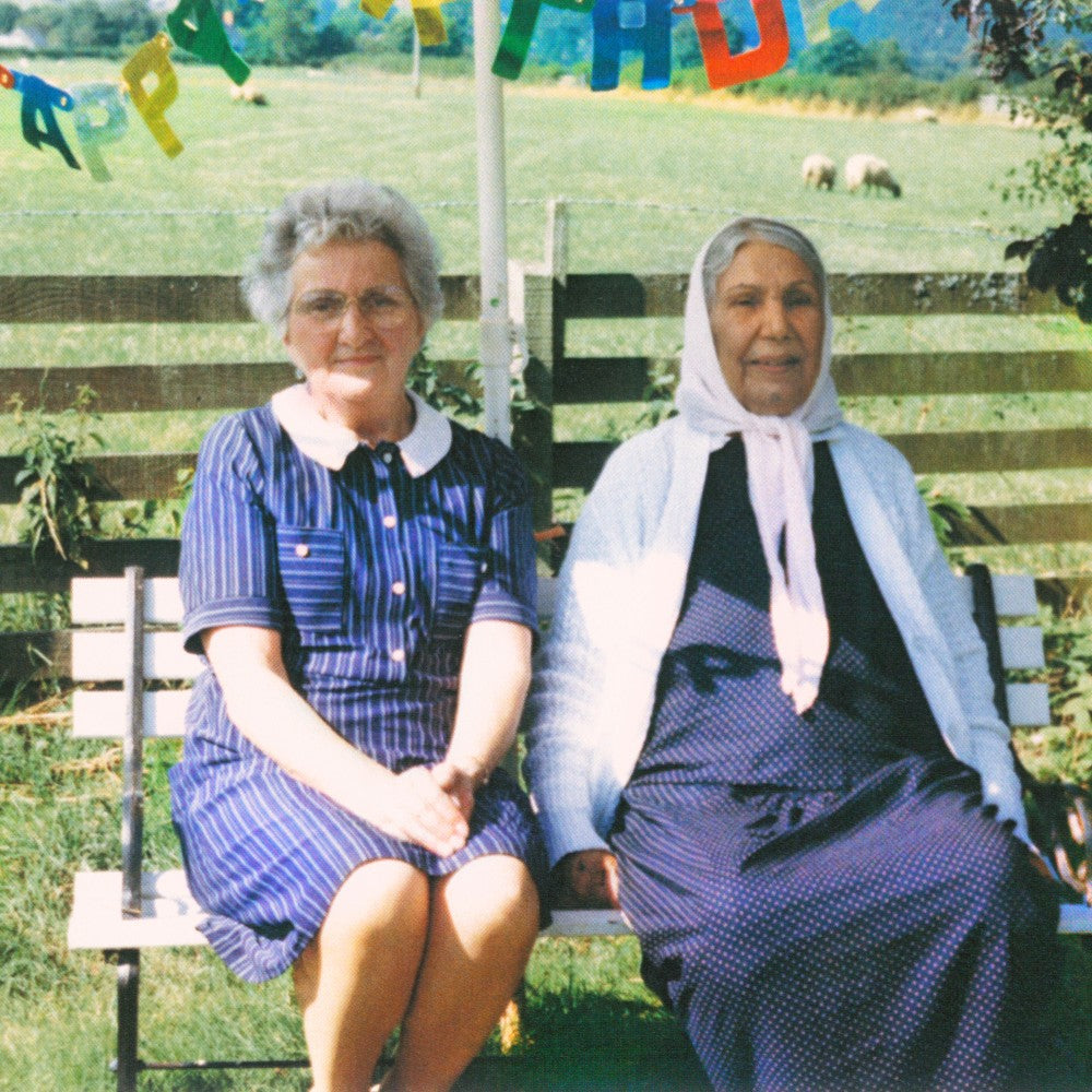 Theory Of Colours By Dauwd