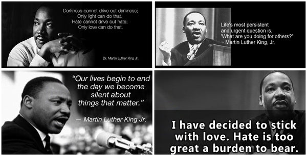 Martin Luther King Jr an American Icon