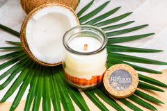 Coconut Wax Launched and Going Strong – Hartmont Candles