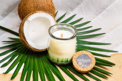 Ginger Lime Aurora - Coconut Wax