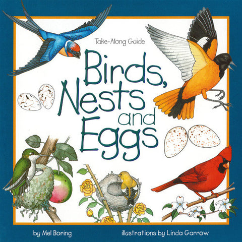 Birds, Nests and Eggs