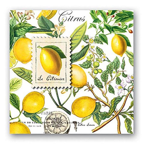 Michel Design Works Paper Luncheon Napkins Box of 6 - Lemon Basil