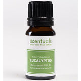 Scentuals 100% Pure Essential Oil 10 ml - Eucalyptus