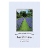 Bridgewater Large Scented Envelope Sachet Pack of 6 - Lavender Lane