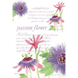 Fresh Scents Scented Sachet Set of 6 - Passion Flower