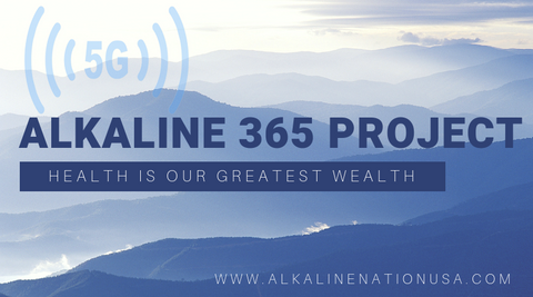Alkaline 365 Project