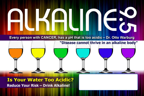 Buy 2 Get 2 FREE - Alkaline 9.5 Demo Cards *Special Offer*
