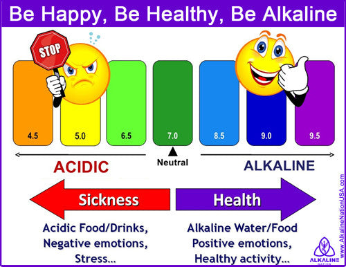 Free Laminated Ph CHART Plus Shipping  Alkaline Nation