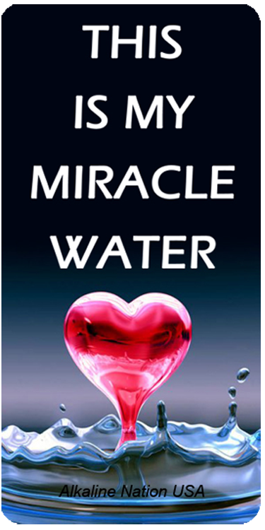 This Is My Miracle Water - Stickers