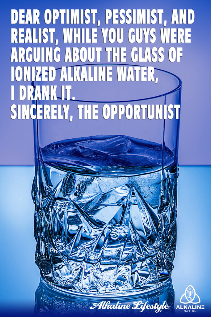 Dear Optimist, Pessimist and Realist - Poster