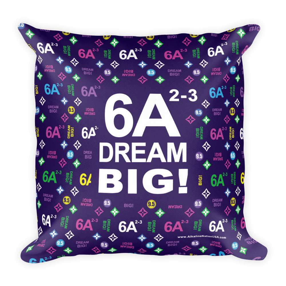 Kangen ACTS 6A2-3 Dream Big Pillow