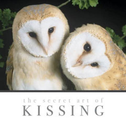 the secret of KISSING