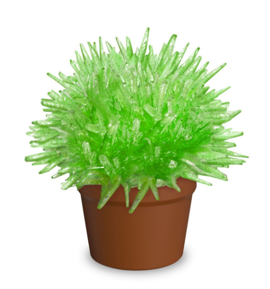 Magic Cactus Crystal (12 pcs assorted colors)