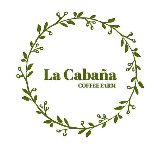 628 卡芭娜莊園・黃卡杜艾・水洗處理法・法漢尼斯 La Cabana Farm, Yellow Catuai, Washed Process, Fraijanes 2018-19 Crop