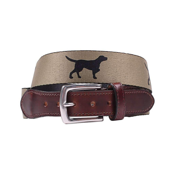 Country Club Prep Hampton Belt in Khaki with Black Labs