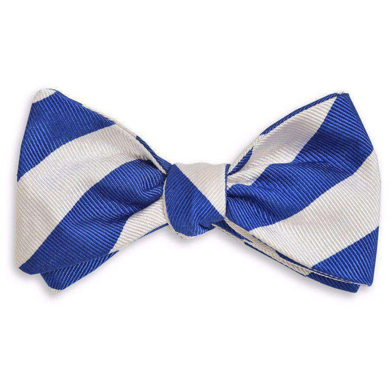 All American Stripe Bow Tie in Royal Blue and White by High Cotton