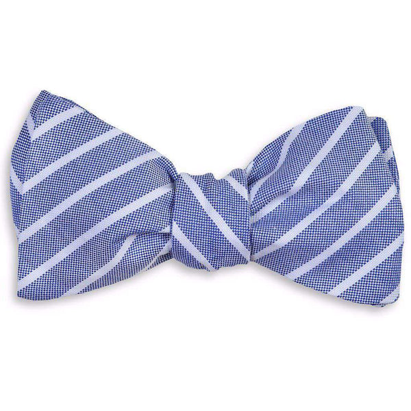 Bow Ties - Beacon Stripe Bow Tie In Navy By High Cotton
