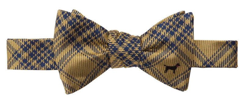 Bow Ties - Black Lab Bow Tie In Yellow By Southern Proper