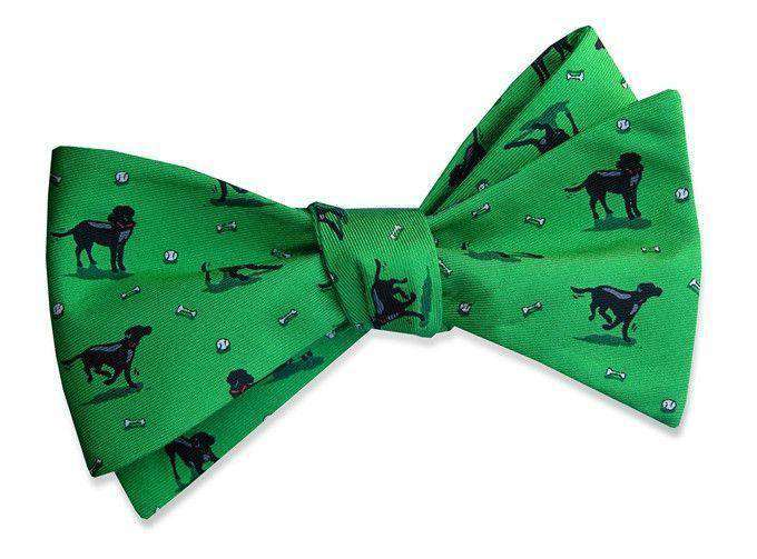 Bow Ties - Black Lab Heaven Bow Tie In Green By Bird Dog Bay