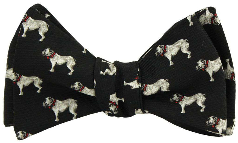Bow Ties - Bulldog Bow Tie In Black By Southern Proper