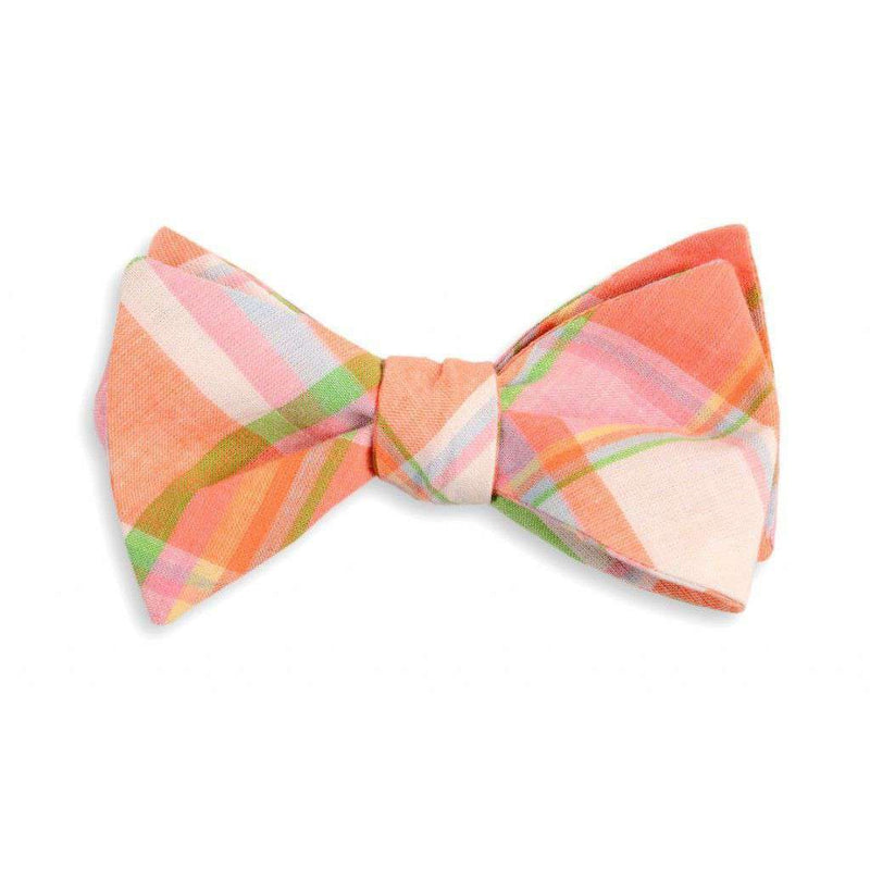 Bow Ties - Camden Madras Plaid Bow Tie By High Cotton