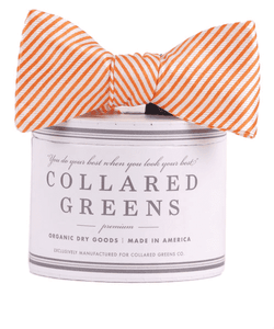 Bow Ties - CG Stripes Bow In Orange By Collared Greens