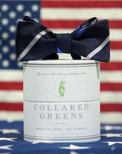 Bow Ties - Cushing Bow In Blue/Silver By Collared Greens