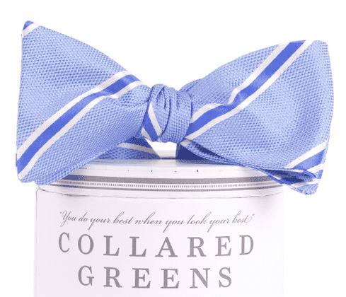 James Bow in Blue by Collared Greens